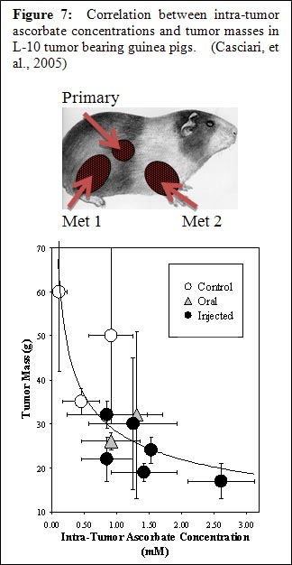 IVC-Protocol-Vitamin-C-Research-Riordan-Clinic-Guinea-Pigs-Tumor
